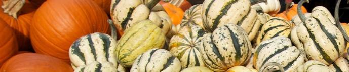 What's fresh this week – November 15th